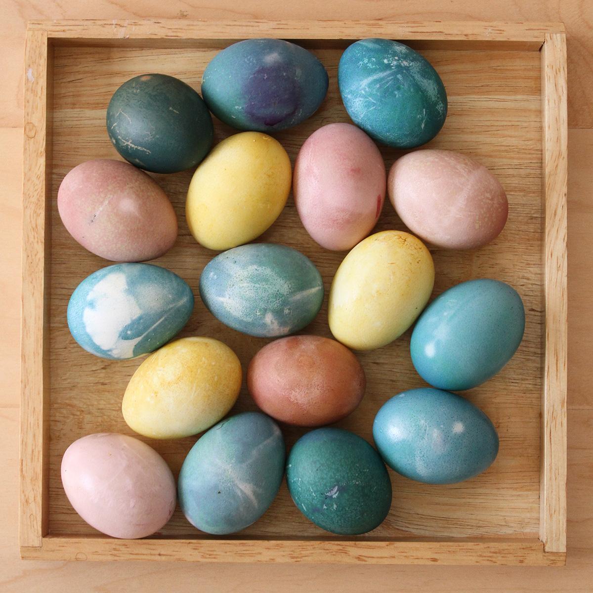 eggs5